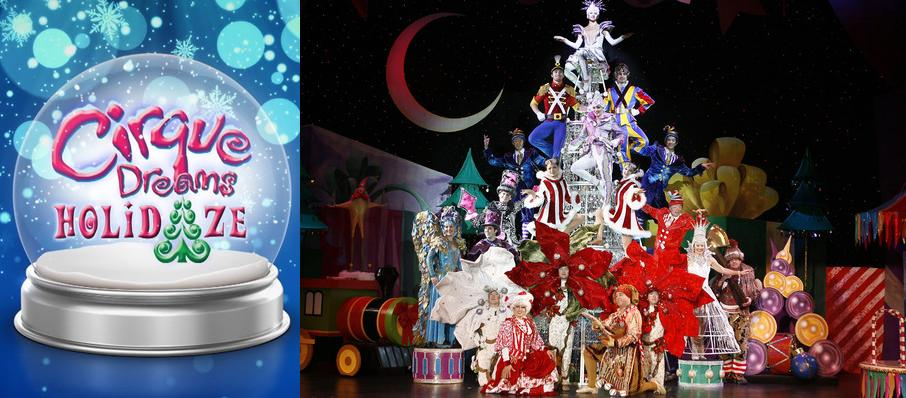 Cirque Dreams: Holidaze at Verizon Theatre