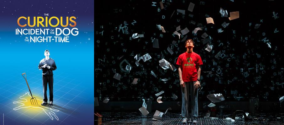 The Curious Incident of the Dog in the Night-Time at Winspear Opera House