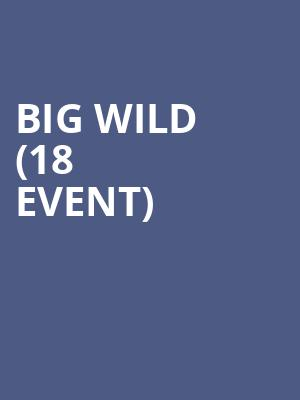 Big Wild (18+ Event) at House of Blues