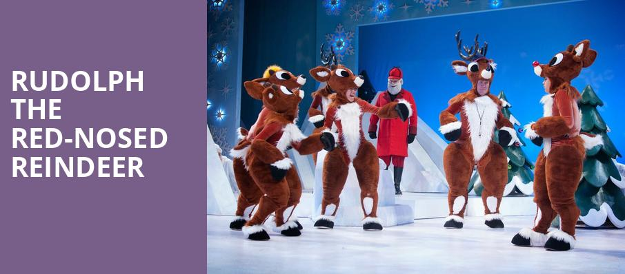 Rudolph the Red Nosed Reindeer, Winspear Opera House, Dallas
