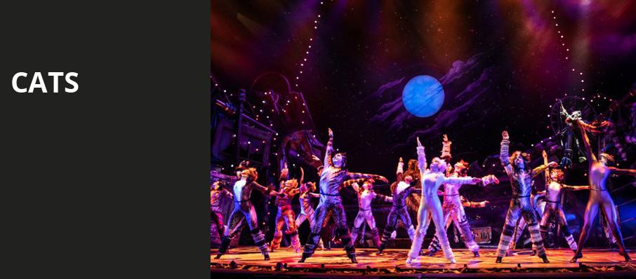 Dallas Theater: Broadway Shows, Musicals, Plays, Concerts in 2019/20