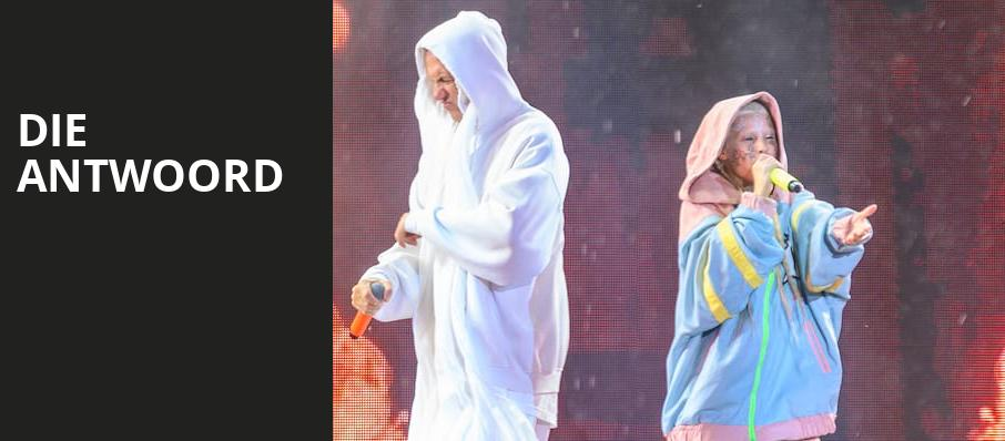 Die Antwoord, Pavilion at the Music Factory, Dallas